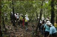 Amazon of Brazil Hotel - Amazon Jungle Adventures